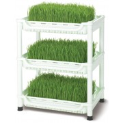 Sproutman pour herbe de blé - Germoir Tribest