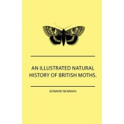 An Illustrated Natural History Of British Moths. With Life-Size Figures From Nature Of Each Species, And Of The More Striking Varieties - Also, Full Descriptions Of Both The Perfect Insect And The Caterpillar, Together With Dates Of Appearance, And Locali
