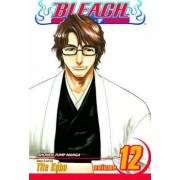 Bleach, Vol. 12 by Tite Kubo