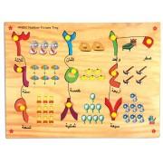 Skillofun Wooden Arabic Number Picture Tray, Multi Color