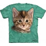Tyler the Kitten - Koszulka The Mountain