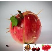 Ceai de fructe Cherry Pie