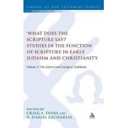 'What Does the Scripture Say?' Studies in the Function of Scripture in Early Judaism and Christianity, Volume 2 by Dr Craig A Evans