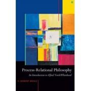 Process-relational Philosophy by C. Robert Mesle