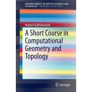 A Short Course in Computational Geometry and Topology by Herbert Edelsbrunner