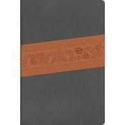 Rvr 1960 Biblia Letra Super Gigante, Gris Piel Fabricada Edicion Con Indice y Cierre