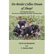 Do Border Collies Dream of Sheep? by Carol Lea Benjamin