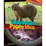 Capybaras and Pygmy Mice by Henry Thatcher