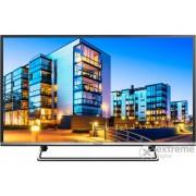 Televizor Panasonic TX-40DS500E FHD LED