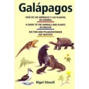 Galapagos: A Guide to the Animals and Plants / Guia de los animales y las plantas / Ein Tier- und Pflanzenfuhrer