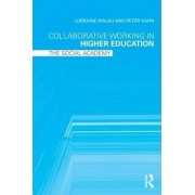 Collaborative Working in Higher Education by Lorraine Walsh