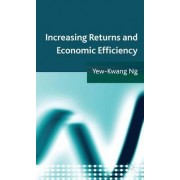 Increasing Returns and Economic Efficiency by Yew-Kwang Ng