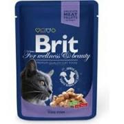 Brit Premium Cat Cod Fish 100g alutasakos