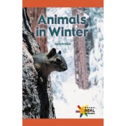 Animals in Winter by Jane Snyder