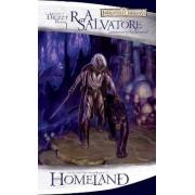 Homeland: Bk. 1 by R. A. Salvatore