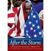 After The Storm by David Dante Troutt