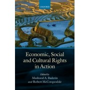 Economic, Social, and Cultural Rights in Action by Professor Mashood A. Baderin