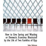 How to Live Saving and Wasting or Domestic Economy Illustrated by the Life of Two Families of Opp by Solon Robinson