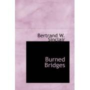 Burned Bridges by Bertrand W Sinclair