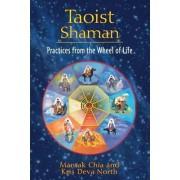 Taoist Shaman by Mantak Chia
