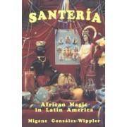 Santeria by Migene Gonzalez-Wippler
