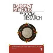 Emergent Methods in Social Research by Sharlene J. Nagy Hesse-biber