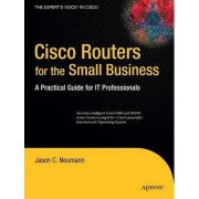 Cisco Routers for the Small Business by Jason Neumann