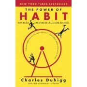 The Power of Habit: Why We Do What We Do in Life and Business, Paperback