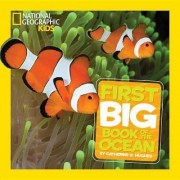 National Geographic Little Kids First Big Book of the Ocean by Catherine D Hughes