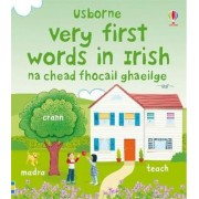 Very First Words in Irish by Felicity Brooks