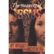 The Meaning of Jesus by Canon N. T. Wright