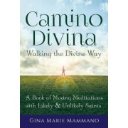 Camino Divina Walking the Divine Way: A Book of Moving Meditations with Likely and Unlikely Saints, Paperback