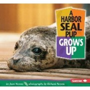 A Harbor Seal Grows Up by Joan Hewett