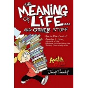 Amelia Rules!: The Meaning of Life... and Other Stuff by Jimmy Gownley
