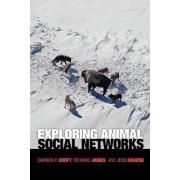 Exploring Animal Social Networks by Darren P. Croft