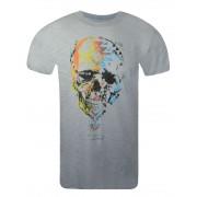 Camiseta - Aeropostale Masculina - Cinza Caveira