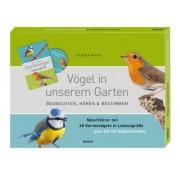 Vögel in unserem Garten - Beobachten, Hören und Bestimmen