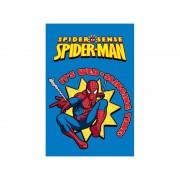 Disney Covor copii Spiderman model 951 160x230 cm