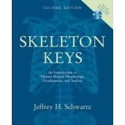Skeleton Keys by Jeffrey H. Schwartz