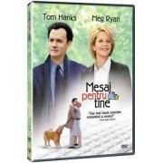 You've Got Mail:Tom Hanks,Meg Ryan - Mesaj pentru tine (DVD)