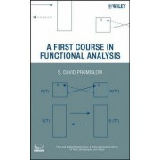 A First Course in Functional Analysis by S. David Promislow
