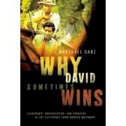 Why David Sometimes Wins by Marshall Ganz