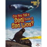 Can You Tell a Seal from a Sea Lion? by Buffy Silverman