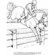 Big Book of Horses to Color by John Green
