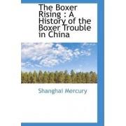The Boxer Rising by Shanghai Mercury