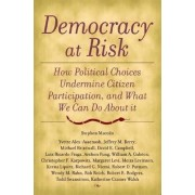Democracy at Risk by Stephen Macedo