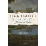 Sonata Fragments: Romantic Narrative in Chopin, Schumann, and Brahms