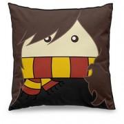 Almofada Harry Potter Bruxinha Hermione