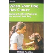 When Your Dog Has Cancer by Lola Ball