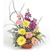 Basket of 15 Mix Flowers for your Love Flower 101